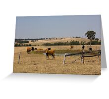 The Fields Of Windermere Greeting Card