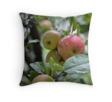 Apple is a Mans Best Ally Throw Pillow