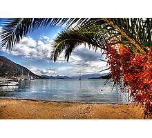Nidri Harbour Framed By Palm Tree  Photographic Print