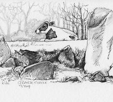 Grange Stone Circle by CapallGlas