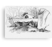 Grange Stone Circle Canvas Print