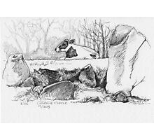 Grange Stone Circle Photographic Print