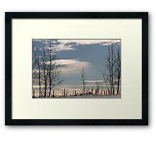 Ragged Fence Framed Print
