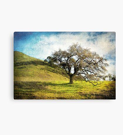 Kiss the Earth Canvas Print