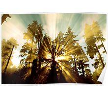 Explosion of Sunlight  Poster
