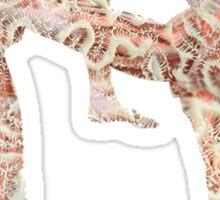 Coral Anatomy Kung Fu  Sticker