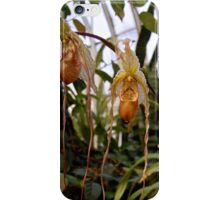 The Twin Orchids iPhone Case/Skin