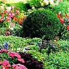 Flower Garden by Jeri Garner