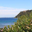 Mackinac Island by Jeri Garner