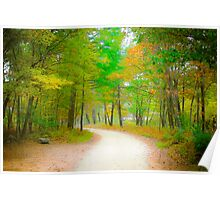 Maine Woods in Fall Poster