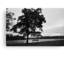 See the world in Black and White Canvas Print