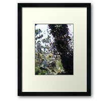 Water in the wind 2 Framed Print