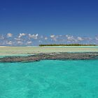 Aitutaki Lagoon, Cook Islands, South Pacific by jcimagery