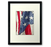 America - Land of the Free Framed Print