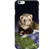 Earth Day Ferret iPhone Case/Skin