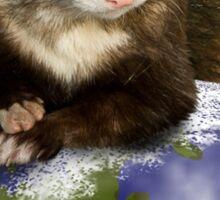 Earth Day Ferret Sticker