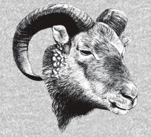 Bighorn Ram Baby Tee