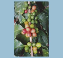 Coffee fruits 2 Baby Tee
