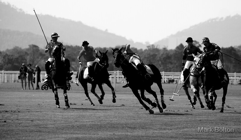 The Miss - Shanghai Polo Gold Cup