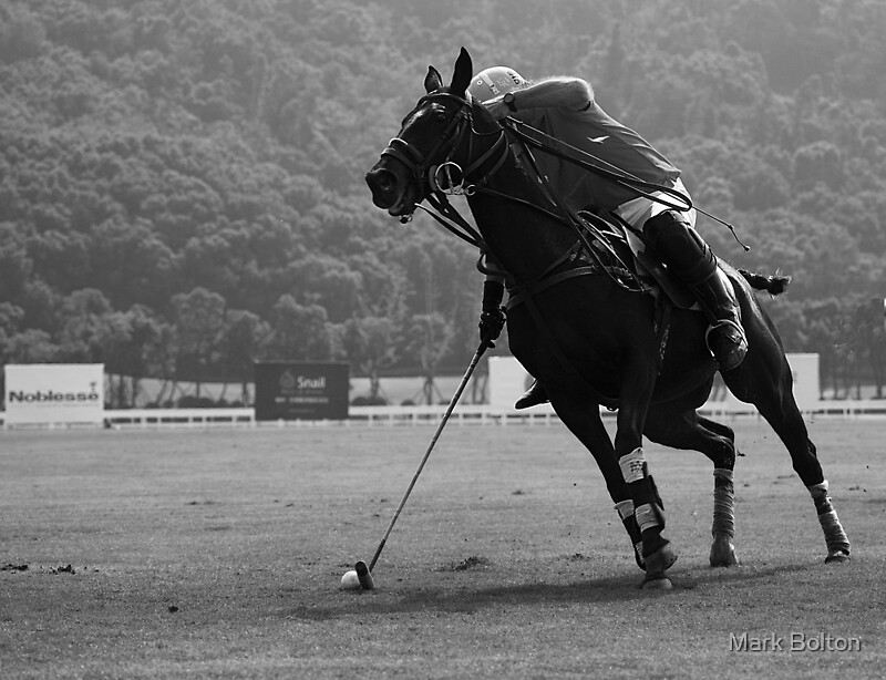 The Catch - Shanghai Polo Gold Cup