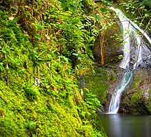 Wigmore's Waterfall by Adrian Alford Photography