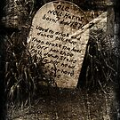 Old Grave by maureenclark