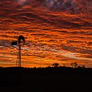 Windmill sunset by Brent Randall