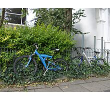 Bicycles and Ivy Photographic Print