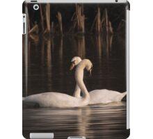 Courtship Painting iPad Case/Skin