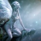 THE MOON FAIRY by Rob  Toombs