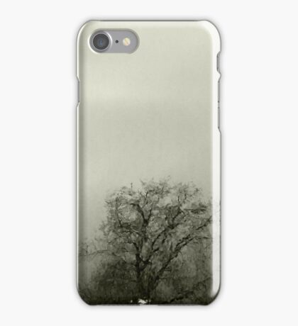 Raymond Chandler Evening iPhone Case/Skin