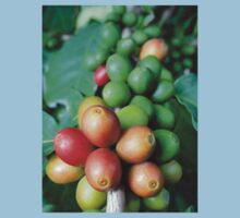 Coffee fruits 1 Kids Tee