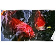 Fishy Encounter Poster