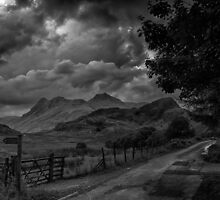 Langdale from Blea Tarn by Alan E Taylor