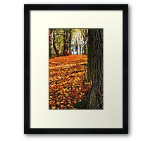Walking to the Light... Framed Print