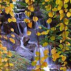 Falling Leaves by Rae Tucker