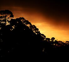 Australian Sunset by PhilJohnPhoto