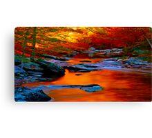 Copper Stream Canvas Print