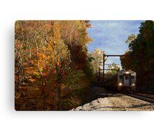 Commuter Canvas Print