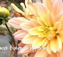 Sweet Sister of My Heart by BrokenbyDesign