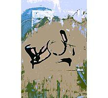 painting Photographic Print