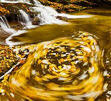 Ebb and Flow by Harry H Hicklin