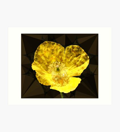 Digital hybrid wild poppy Art Print