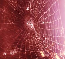 Scarlet Web  by Vincent J. Newman