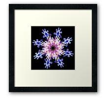 Violet flowers Framed Print
