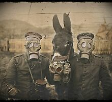 Soldiers and Mule Wear Gas Masks by diane  addis