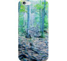 Rocky Forest Adventure iPhone Case/Skin