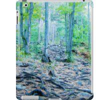 Rocky Forest Adventure iPad Case/Skin