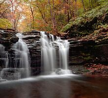 Subtle Fall Hues At Wyandot Falls by Gene Walls