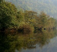 Autumn Reflections At Symonds Yat  by edesigns14